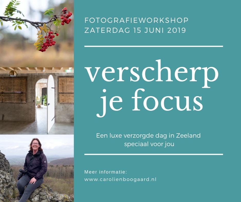 Fotoworkshop Zeeland natuurfotografie